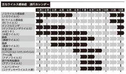 主なウイルス感染症 流行カレンダー