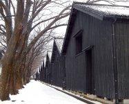 四季折々の美しい様子が見られる山居倉庫のけやき並木は、CMや広告などにもよく登場する