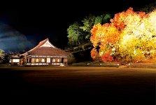 11月上旬にライトアップする旧閑谷学校の楷の木は、深い紅と黄に色づく