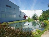 大鵬薬品工業岡山工場にあるビオトープ最上流の吹き出し池(左)と放水池