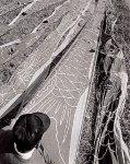 昭和30年ごろの製造の様子。鯉のぼりを川縁で乾燥させていた