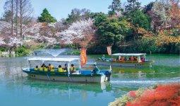 高岡古城公園にある遊覧船。船の上からは高岡城の石垣や四季折々の自然を見ることができる