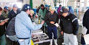 福井中央卸売市場でのセリ風景。朝早くから威勢のいい声が響き渡る。本セリの後、午前7時40分から始まる「近海今朝とれ市」では、その朝に揚がった定置網漁の魚がセリにかけられ、その日のうちに消費者の元に届く