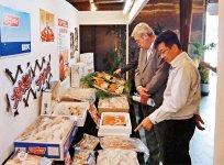 全社員が力を注ぐ、年に1回の展示会の風景。全特約企業なので、メーカー別ではなく魚種別の展示ができるのも、福井中央魚市ならではだ