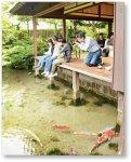 湧水庭園「四明荘」。豊かな湧水を利用してつくられている住宅庭園の一つで、四方の眺望に優れている