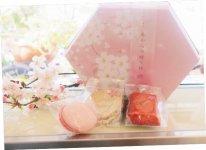 店頭にはいつも旬の果実を使った洋菓子が並ぶ。写真はマカロン、フィナンシェ、ダックワーズなどのさくらのお菓子