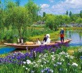 水郷佐原水生植物園 写真提供:水郷佐原観光協会