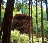 国宝「安楽寺八角三重塔」。木造の八角塔としては全国に1つしかないという貴重な建築物