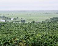 細岡展望台から望む「釧路湿原」