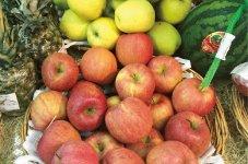 VLマートに陳列された日本の果物。販売価格は日本の3〜4倍だが、日本産のブランドイメージは高く、ヨーロッパの輸入規制もあり、引き合いも増えている