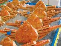 津居山カニ:市内津居山港で水揚げされた「ズワイガニ」。好漁場・丹後半島沖のカニを水揚げ当日に持ち帰る「日帰り操業」が特徴