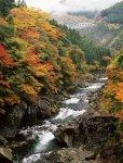富郷渓谷:銅山川の上流約6kmにわたり変化に富んだ渓谷美が続く。秋には紅葉狩りが楽しめる