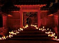 普段は静かなこの屋敷も、イベントの際には目玉の一つとして竹灯籠により美しくライトアップされた