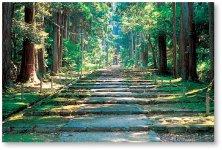 白山平泉寺:白山信仰の拠点。かつては数十のお堂やお社、数千の坊院があった中世の一大宗教都市