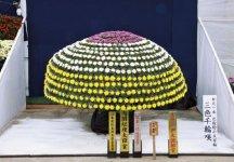 日本菊花会主催の第33回日本菊花全国大会(於:国華園)の受賞作品。内閣総理大臣賞。全国4800人から出品があった