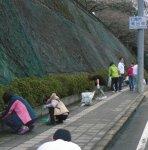 小丸山城址公園で草取りを行うメンバー