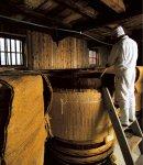 築80年あまりという蔵の中には「蔵付き菌」と呼ばれる菌が住みつき、それが酢を育てていく
