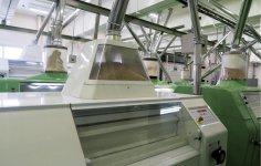 製粉はすべて機械化されており、工場内はクリーンに保たれている