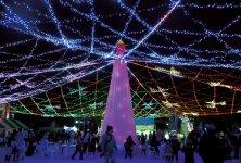 「周南冬のツリーまつり」のシンボル・天空のライティングフラワー