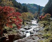 清流の鮎川