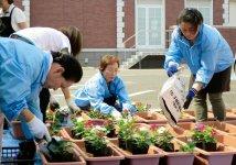プランターにはそれぞれ花3株を丁寧に植栽