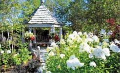 ガーデニングされた庭/同市内恵み野地区などの個人宅多くで見られる