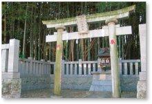 八幡の藪知らず:中に入ると神隠しにあうという伝説が残されている神秘的な竹やぶ