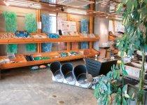 """本社内にあるモノ:ファクトリーのショールーム。廃棄物から生まれたさまざまな""""マテリアル""""を並べて販売している"""
