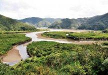 国定公園特別保護区に指定されているマングローブ原生林