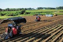 「甦る大地の会」の農場では、40haに及ぶ畑で原料の栽培を行っている