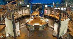 展示フロアのほぼ中央に常設されたティラノサウルスのロボット。鳴き声や動作がリアルで、思わず泣き出す子どもも……