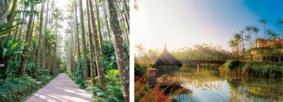 東南植物楽園:(左:植物園エリア)日本ではここでしか見られないユスラヤシの並木通りは圧巻。(右:水上楽園エリア)ほかではなかなか見ることができない貴重な熱帯亜熱帯の水辺の植物を中心に見ることができる