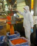 吉岡食品工業では、乾燥唐辛子をはじめ塩漬けや酢漬け、佃煮など多角的にトウガラシ加工を手がける。栃木三鷹の商品化にも技術力が生きる