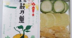 140年もの歴史がある「萩乃薫」。秋には夏ミカンの子ども「青切り」も入る
