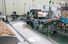 パックされた製品は食品用金属探知機を通してから出荷