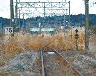 常磐線は原ノ町駅から南側で復旧の目途が立っておらず、路線に草が生い茂る(福島県南相馬市・小高駅付近)
