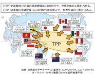 TPP交渉参加12カ国の経済規模・TPP経済圏の市場規模