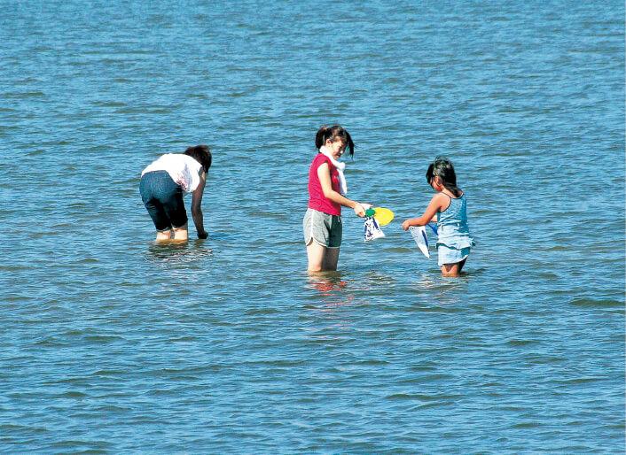 十三湖は、おいしいシジミの産地としても知られている