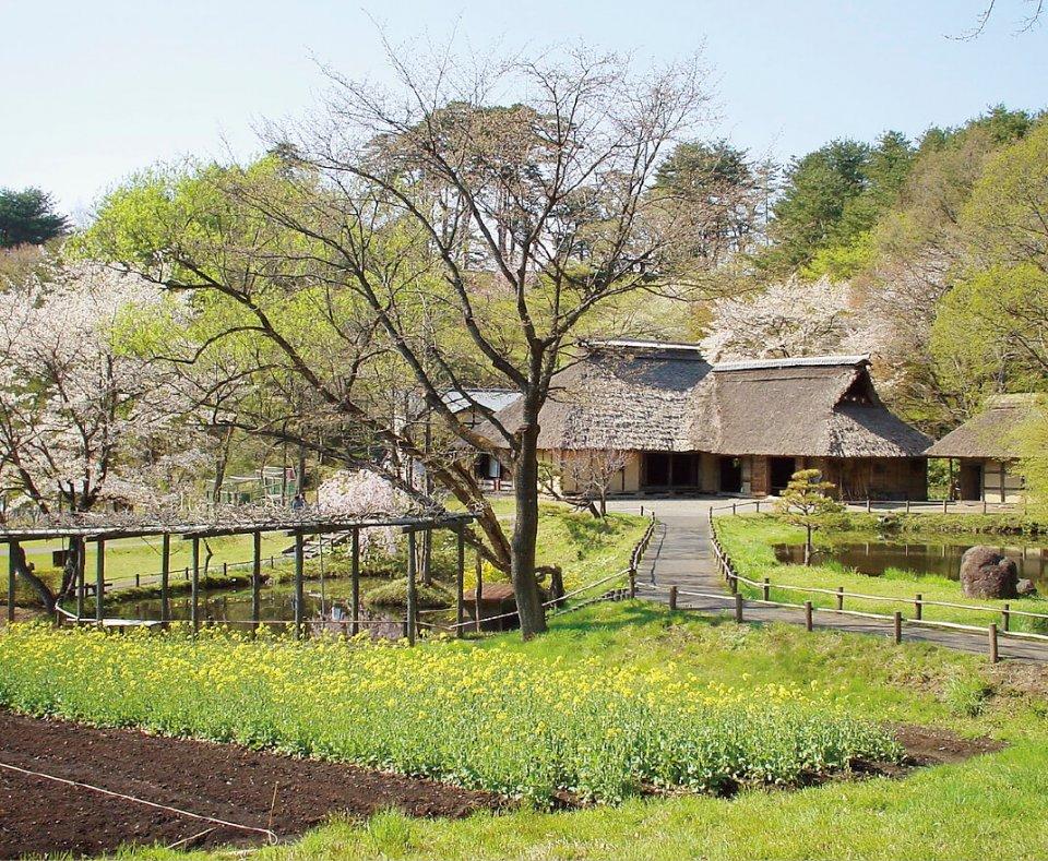 丘陵全体が歴史的建造物の展示場となっている野外博物館「みちのく民俗村」。竪穴式住居、武家屋敷、商家などが見学できる