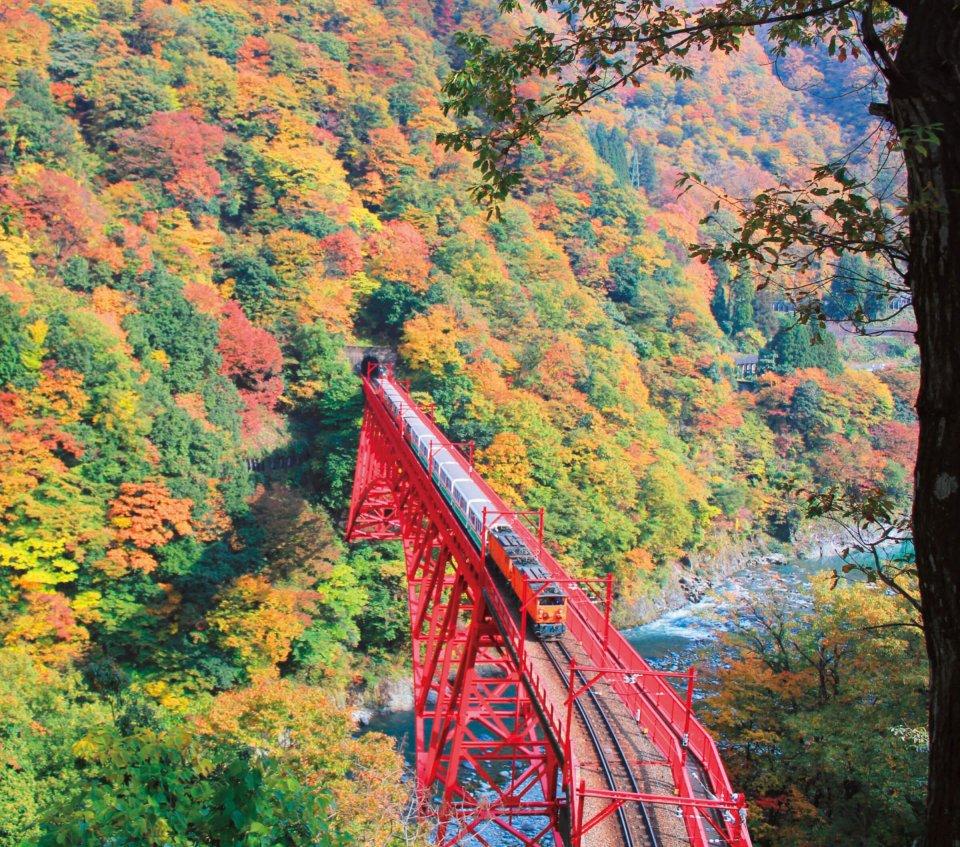 黒部峡谷鉄道 写真提供:富山県観光連盟