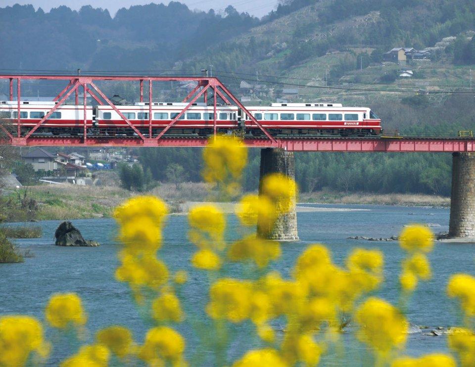 """紀の川に架かる橋を走る南海電鉄のこうや号。"""" 橋本 """" の名前は天正15(1587)年に、まちを開いた応其上人が紀の川に橋を架けたことに由来している(写真提供=橋本市観光協会)"""