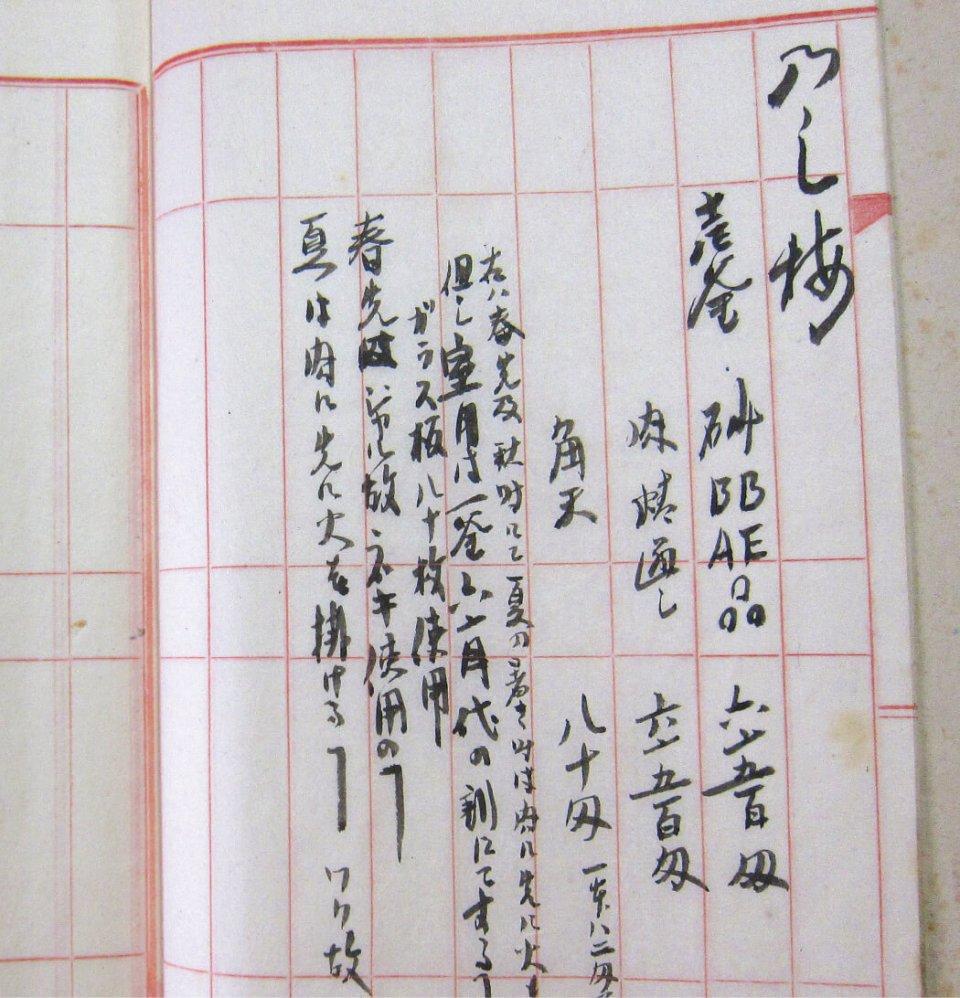 大正10年に書かれた、のし梅を製造するための材料の割合と製造方法