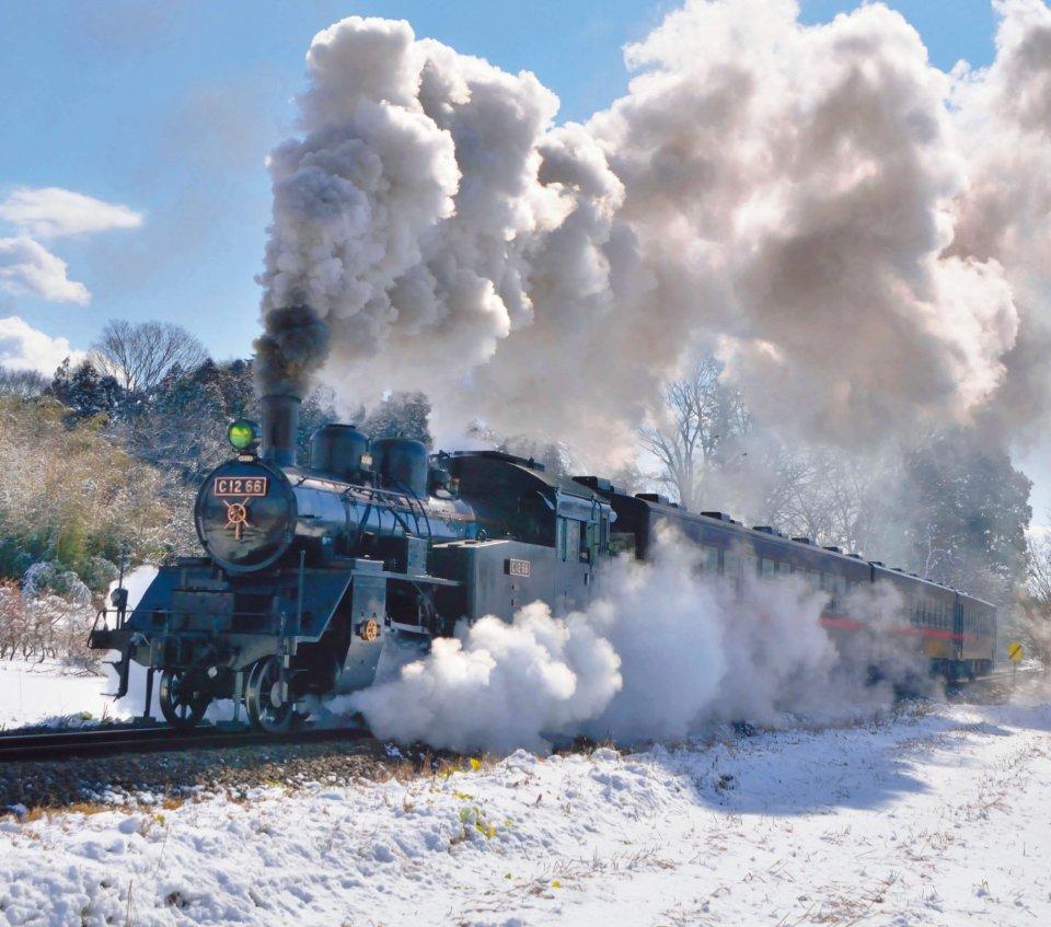 真岡鐵道 写真提供:真岡鐵道株式会社