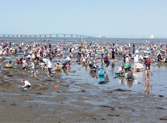 市内の海岸で楽しめる潮干狩。貝はアサリ中心だが、ハマグリやアオヤギなどが混じって採れることも