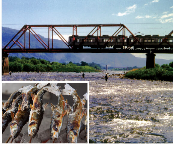 千曲川と別所線。6月〜9月には、川沿いに仮設のつけば小屋がオープン。アユやウグイ(ハヤ)の塩焼きや唐揚げは美味