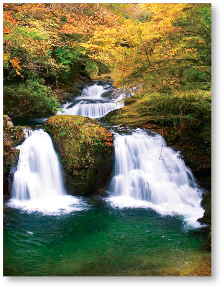 赤目四十八滝:室生赤目青山国定公園の中心に位置し、数々の瀑布が美しい観光地です