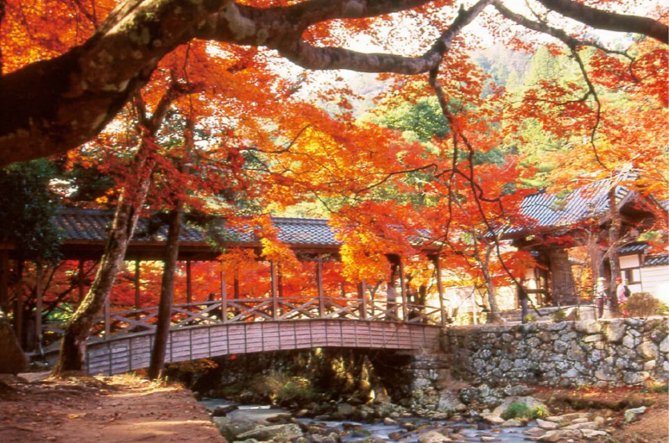 臨済宗佛通寺派の大本山であり、西日本屈指の禅道場としても知られる佛通寺