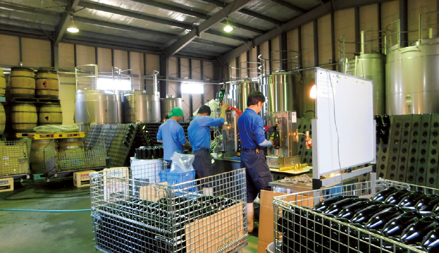ワインはイタリア製のビン詰め機械で生産されるが、スパークリングワインは手作業で澱引き(おりびき)している