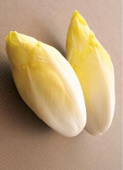 サラダコスモは国産ちこりの栽培に成功し、国内生産量日本一を誇る