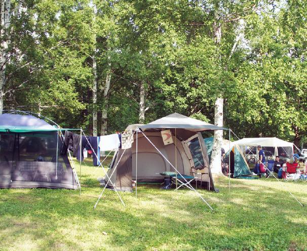 岩尾内湖周辺ではキャンプを楽しめる